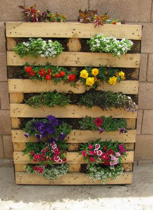 ... un piccolo giardino fai da te sul balcone  Blog casa e arredamento